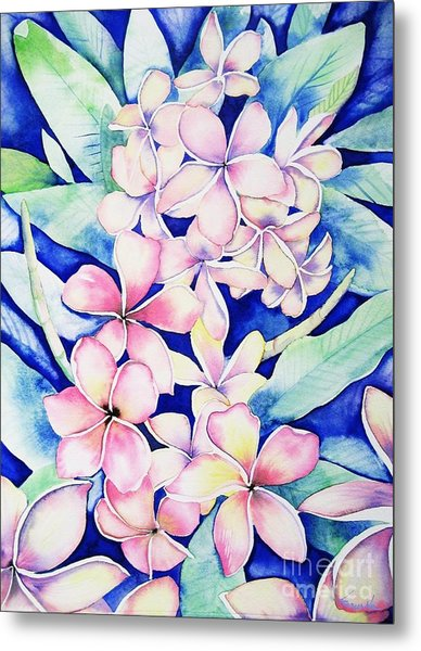 Plumerias Of Maui Metal Print