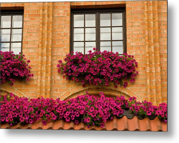 Poland, Gdansk Window Boxes With Purple Metal Print