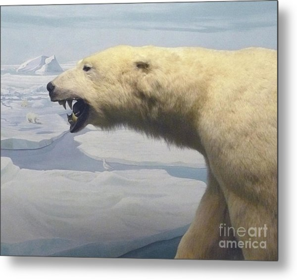 Polar Bear Diorama Metal Print
