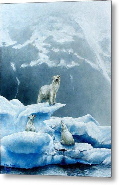 Polar Knowledge Metal Print by Cara Bevan