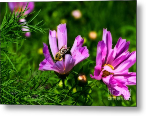 Pollinating Flowering Metal Print