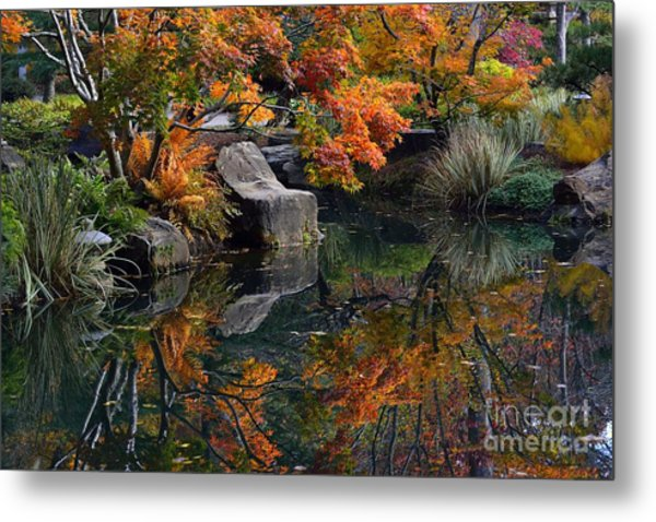 Pond In Autumn Metal Print