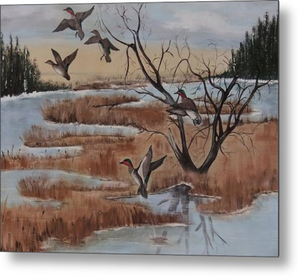 Pond In Fall Metal Print