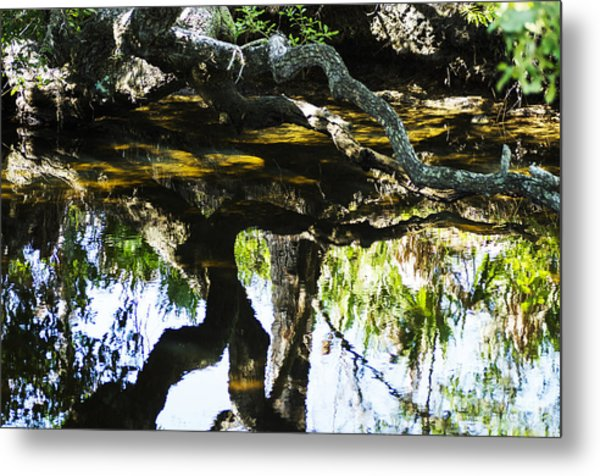 Pond Reflection Metal Print