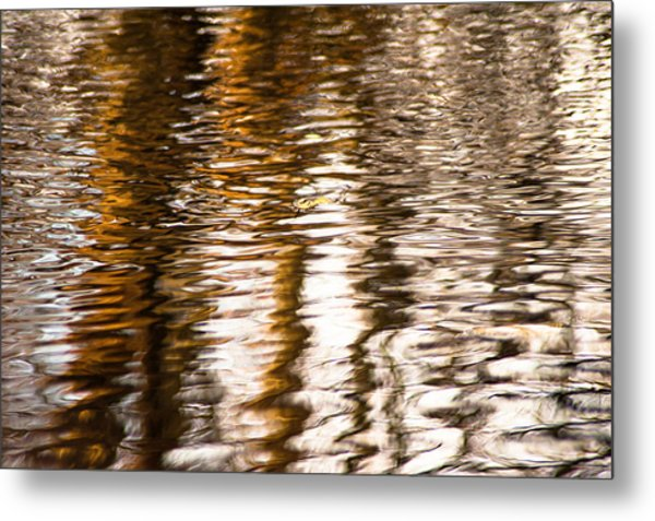 Pond Reflections #2 Metal Print