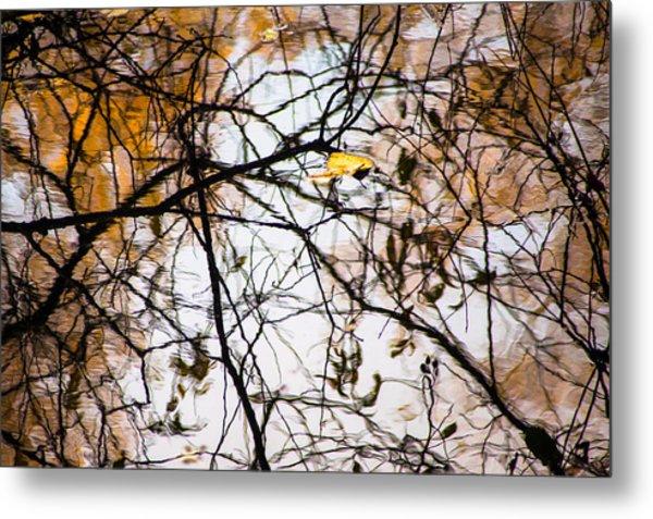 Pond Reflections #7 Metal Print