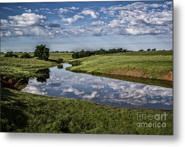 Pond Reflections Metal Print