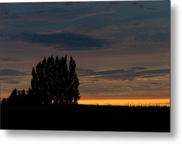 Poplars Flanders Sunset Metal Print