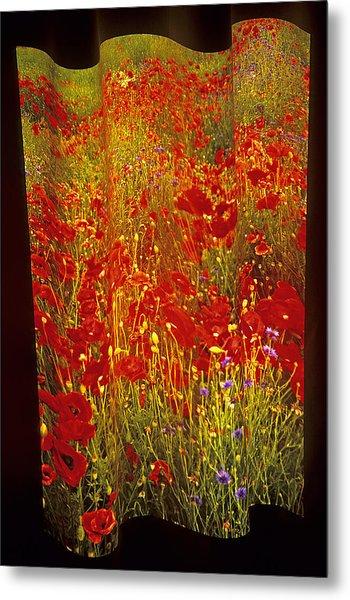 Poppies And Wildflowers Metal Print