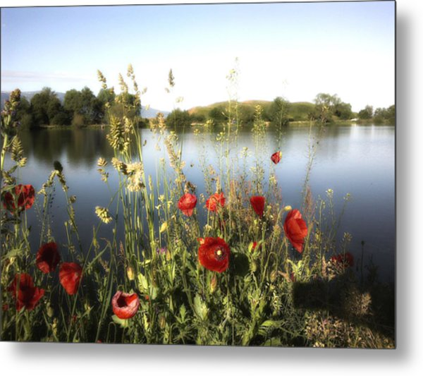 Poppies At Lake Metal Print