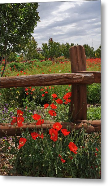 Poppies At The Farm Metal Print