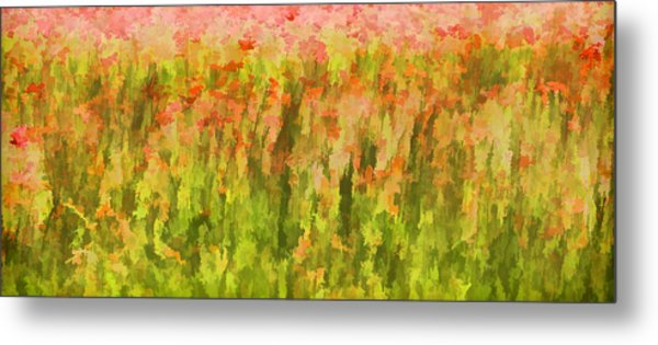 Poppies Of Tuscany IIi Metal Print