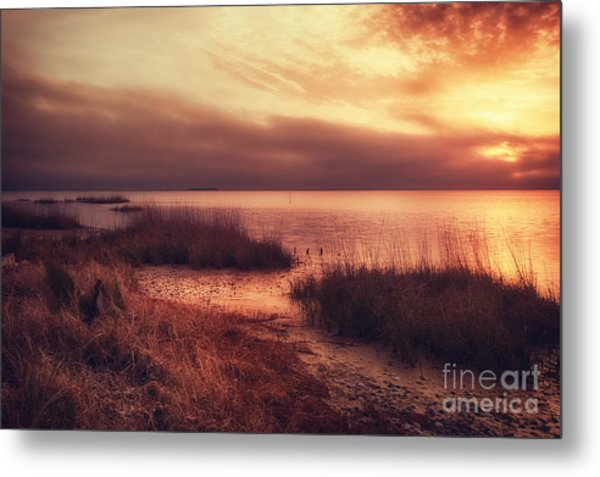 Port St. Joe Bay Metal Print