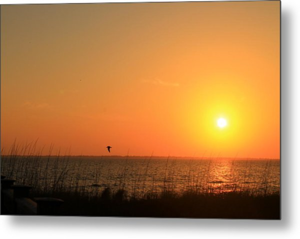 Port St. Joe Sunset Metal Print