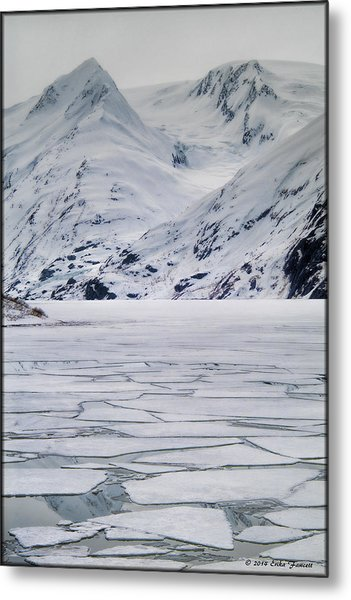 Portage Lake Metal Print