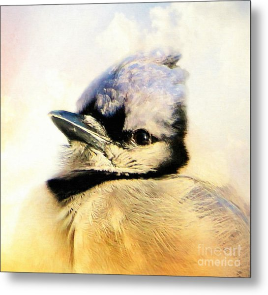 Portrait Of A Blue Jay Metal Print