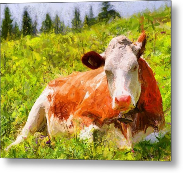 Portrait Of A Cow 2 Metal Print