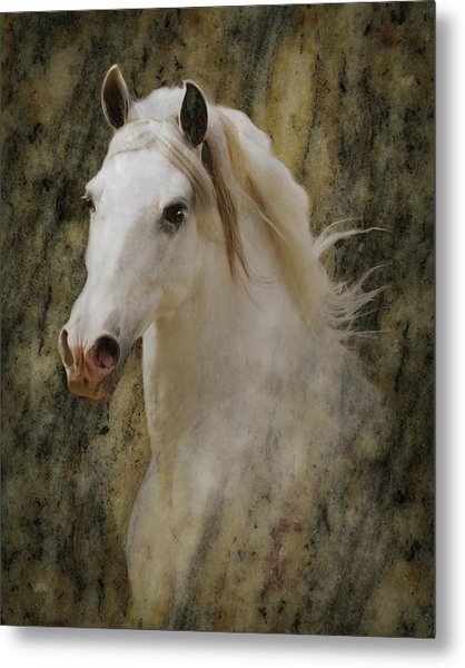 Portrait Of A Horse God Metal Print
