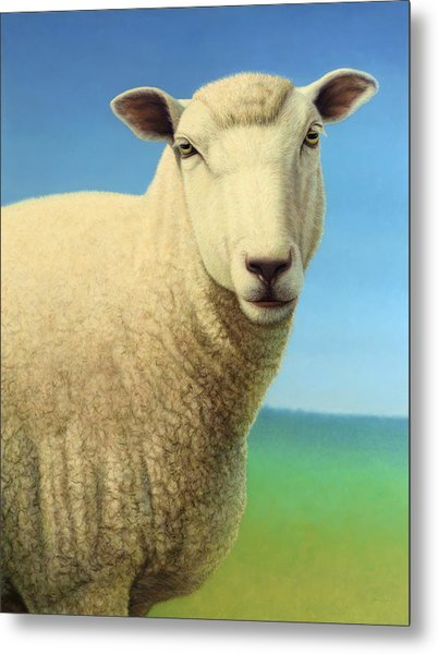 Portrait Of A Sheep Metal Print