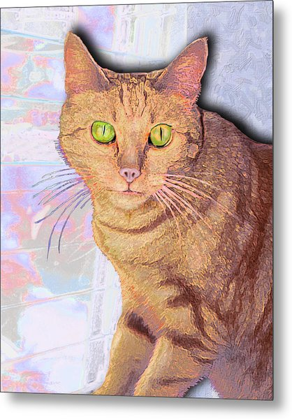 Portrait Of Buster I Metal Print