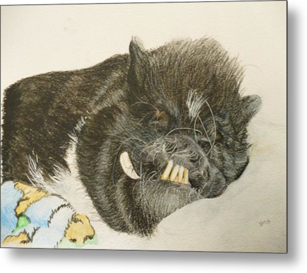 Potbellied Pig Memorial Watercolor Portrait U Provide The Picture Or Idea Made To Order 9 X 12 Inch  Metal Print