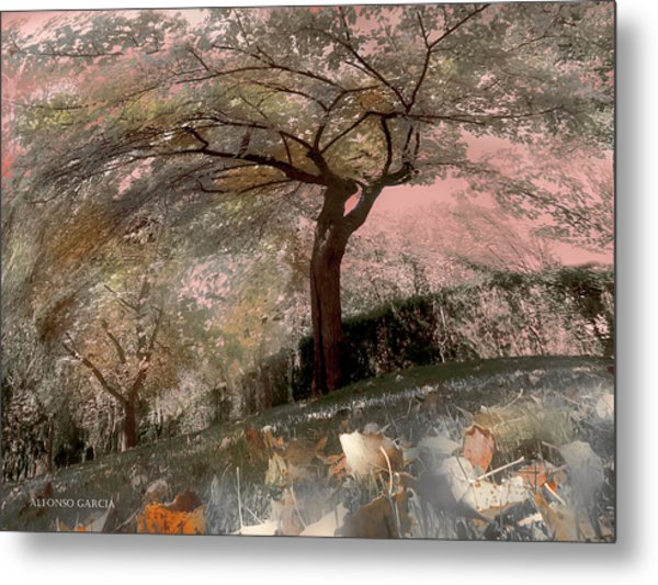 Pozuelo Autumn Metal Print