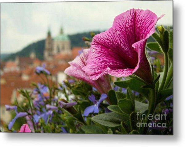 Prague In Bloom Vi - Summer Edition Metal Print