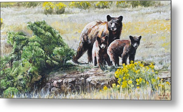 Prairie Black Bears Metal Print