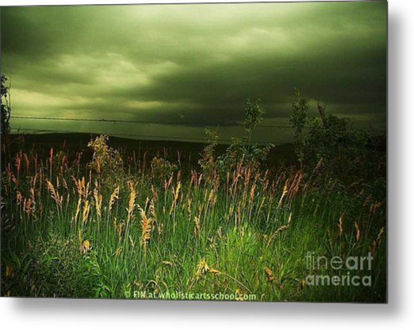 Prairie Clouds Metal Print