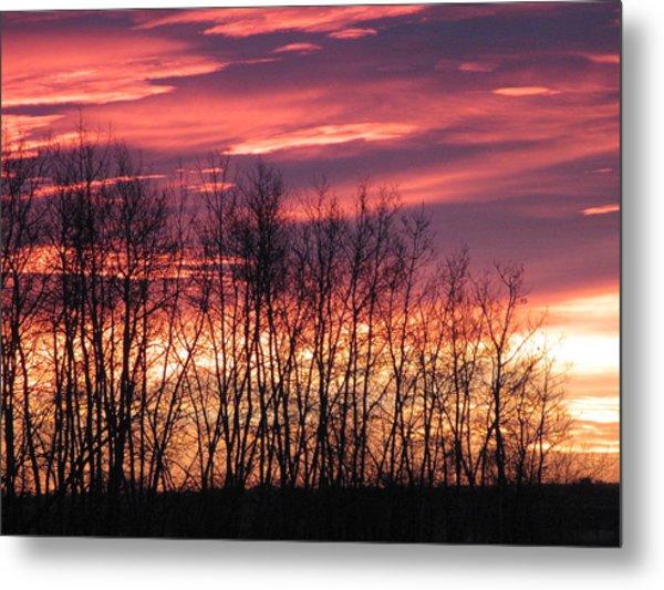 Prairie Sunrise Metal Print by Susan Copley