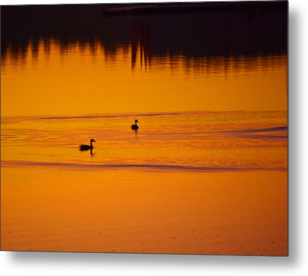 Pre Dawn Light Metal Print