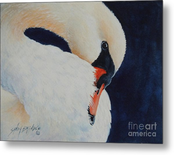 Preening. Sold  Metal Print