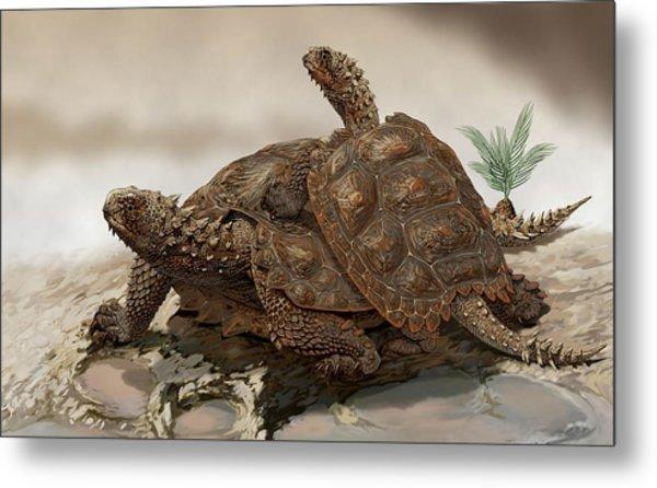 Prehistoric Turtles Metal Print by Jaime Chirinos/science Photo Library