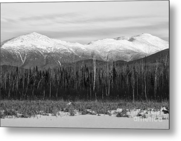 Presidential Range - Pondicherry Wildlife Refuge New Hampshire Metal Print