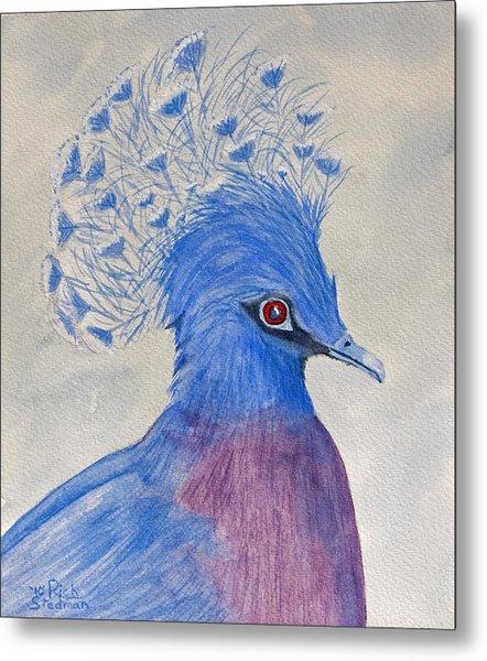 Preston Pigeon Metal Print