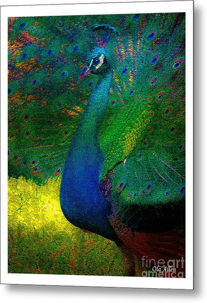 Pretty As A Peacock Metal Print