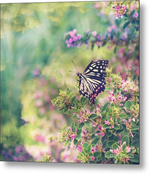 Pretty Butterfly Orange Markings Pink Flowers Green Leaves Metal Print