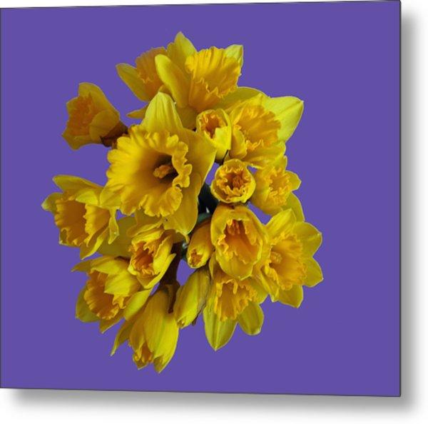 Pretty Daffodils Metal Print