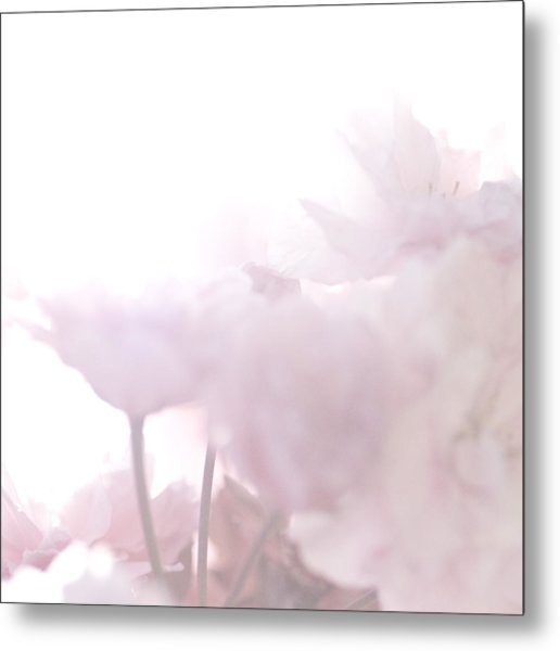 Pretty In Pink - The Whisper Metal Print
