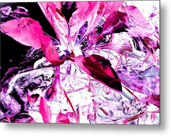 Pretty Pink Weeds 5 Metal Print