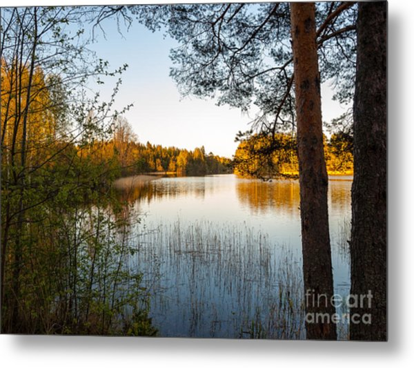 Pretty Spring Evening At The Lake Metal Print