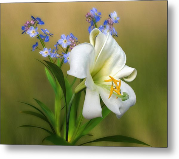 Pretty White Lily Metal Print