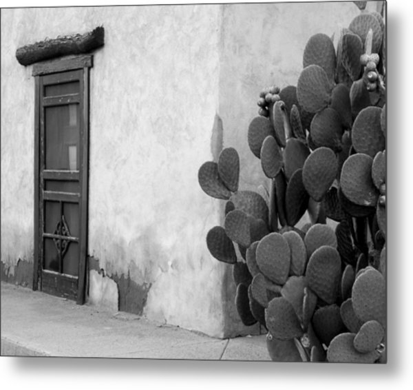 Prickly Passage Metal Print