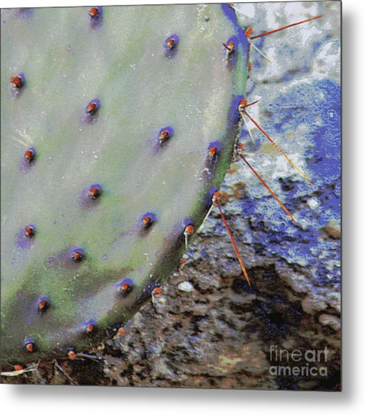 Prickly Pear Metal Print by Joe Pratt