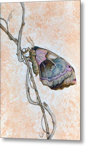 Promethea Moth Metal Print