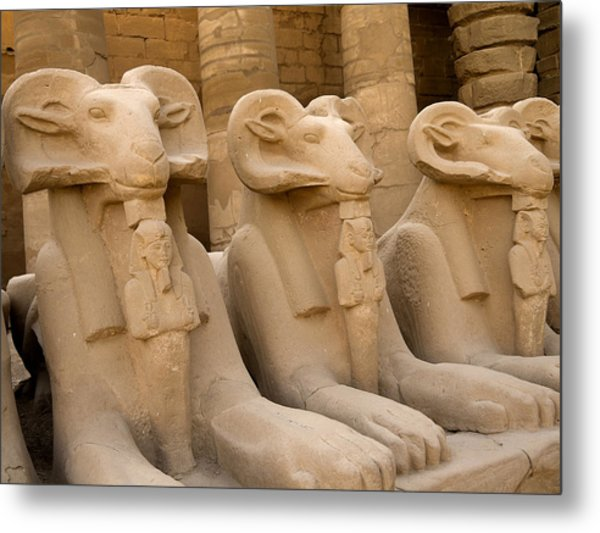 Protectors Of The Ages Metal Print