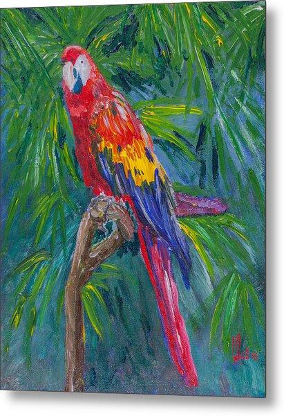 Proud Parrot Metal Print