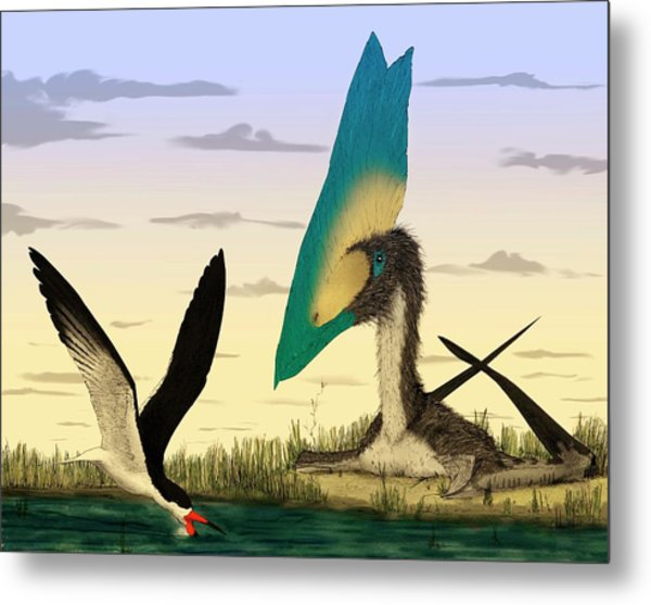 Pterosaur And Skimmer Bird Metal Print