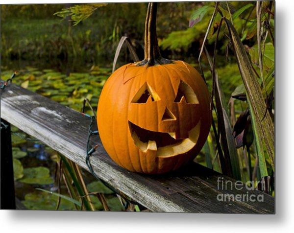 Pumpkin By The Pond Metal Print