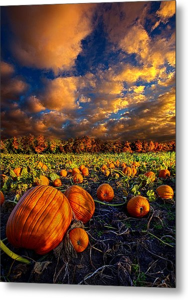 Pumpkin Crossing Metal Print